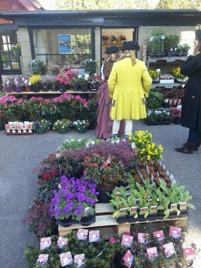 Garden shop 4-186Kb